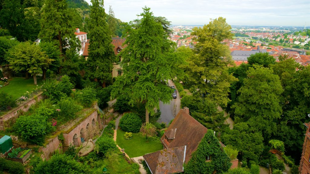 Heidelberg Castle which includes landscape views, a small town or village and heritage elements
