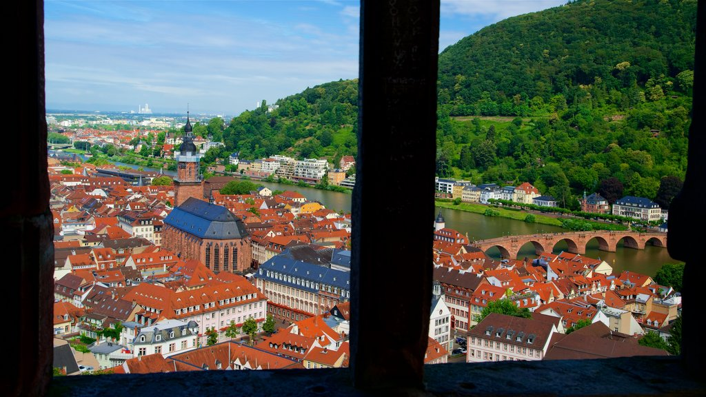 Heidelberg Castle which includes a bridge, interior views and a city