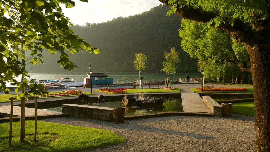 Strobl which includes a sunset, flowers and a lake or waterhole