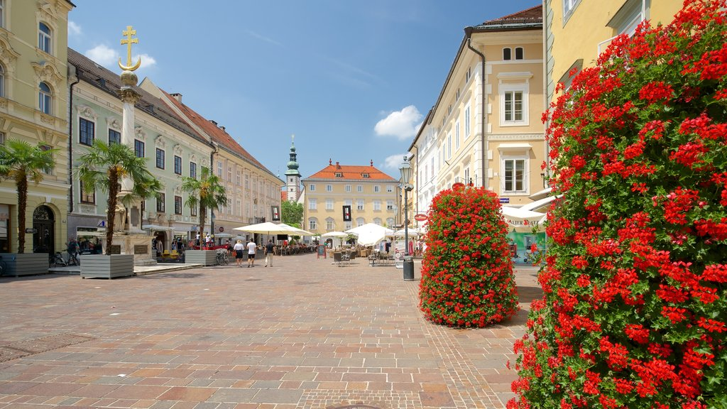 Old Square showing flowers and heritage elements