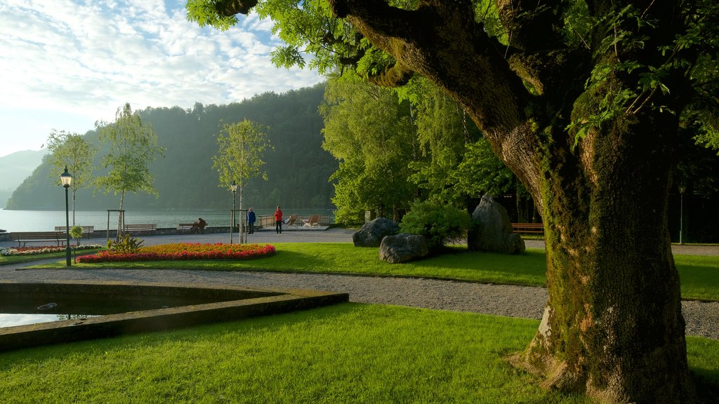 Strobl featuring a park, flowers and a lake or waterhole
