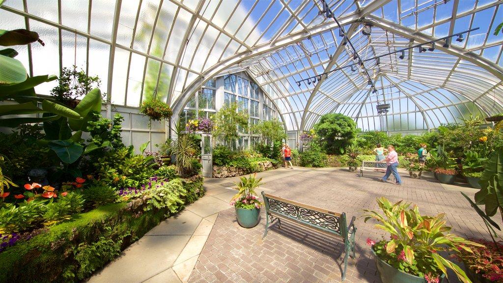 Anna Scripps Whitcomb Conservatory showing a park and interior views
