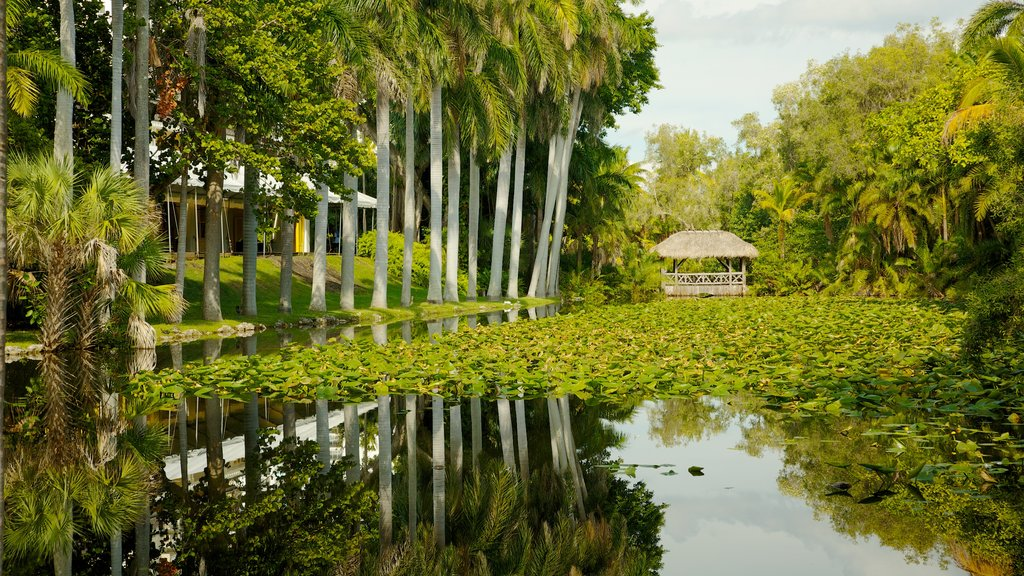 Fort Lauderdale which includes tropical scenes, landscape views and a pond