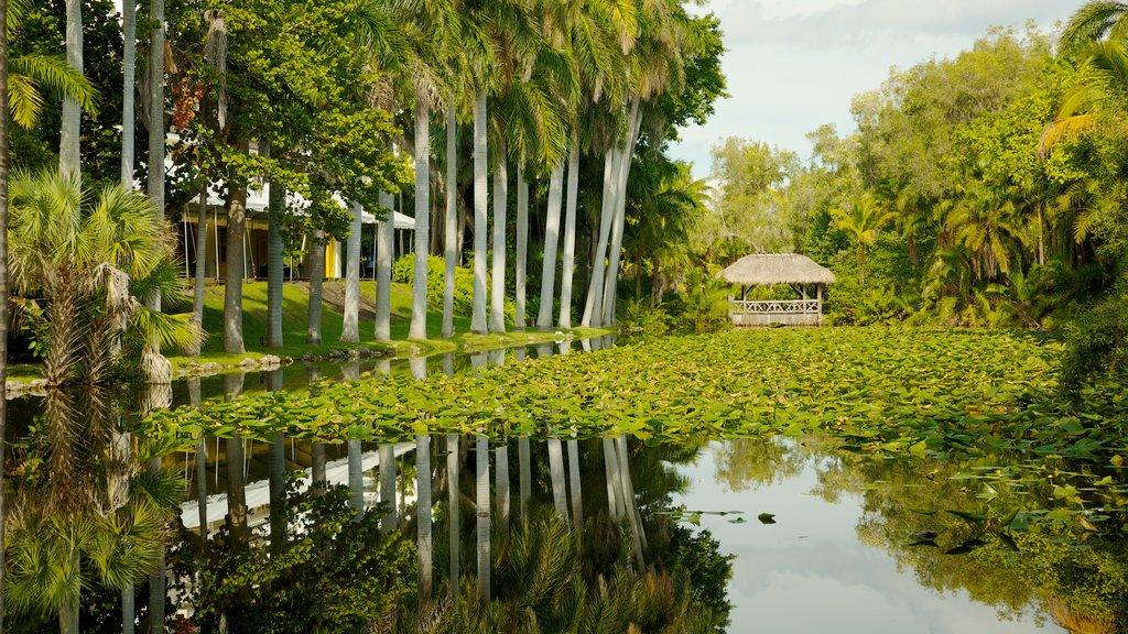 Fort Lauderdale ofreciendo vistas de paisajes, un estanque y un parque