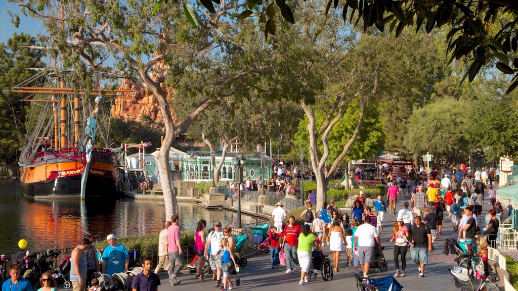 Disneyland® Park which includes rides as well as a large group of people