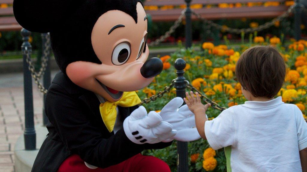 Parque Disneyland® mostrando flores y paseos y también un niño
