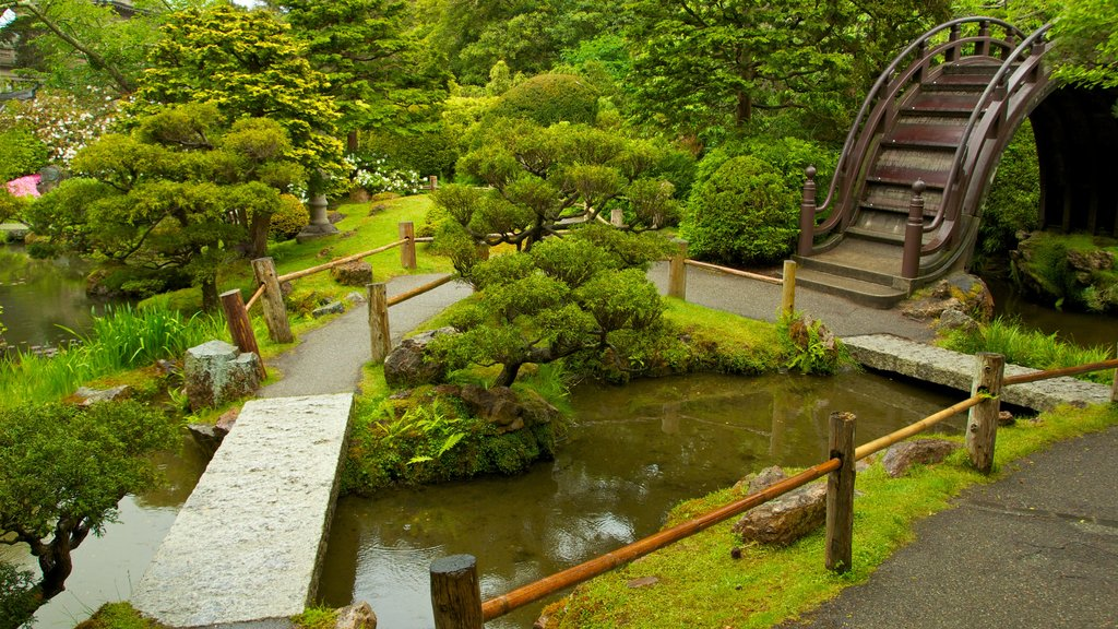 Japanese Tea Garden which includes a pond, a garden and landscape views