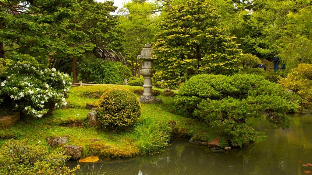 Jardín de Té Japonés mostrando vistas de paisajes, un estanque y un parque