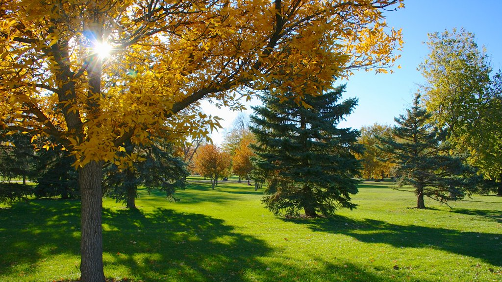 City Park which includes landscape views, a garden and fall colors