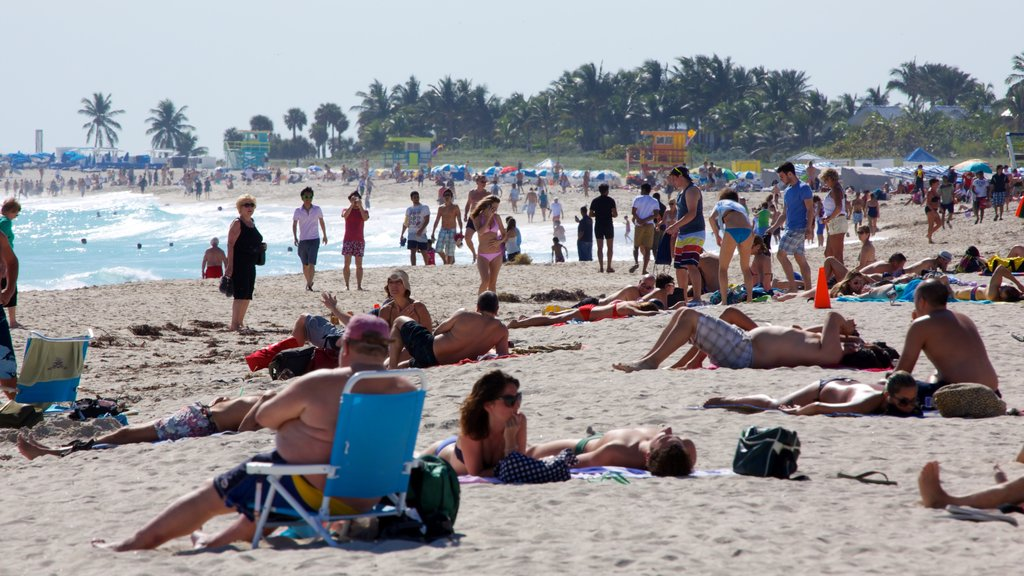 Miami Beach showing a beach as well as a large group of people