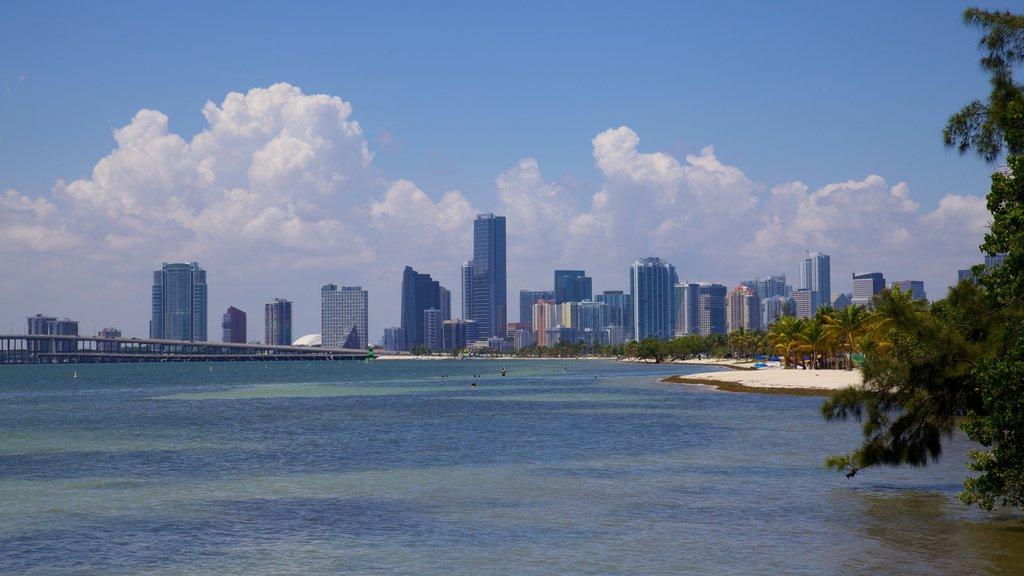 Miami which includes skyline, a skyscraper and a city