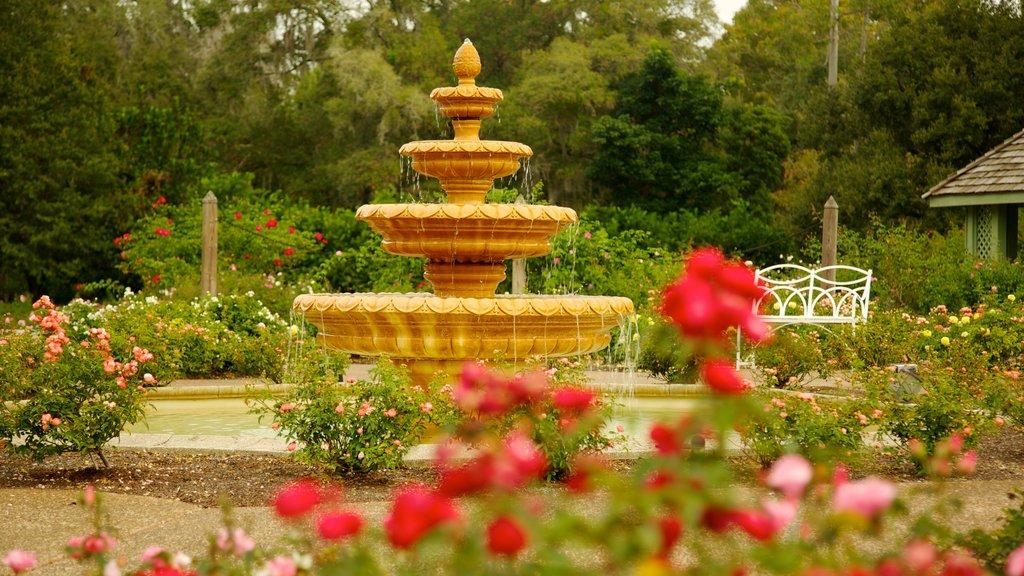 Harry P. Leu Gardens featuring flowers, a fountain and a garden
