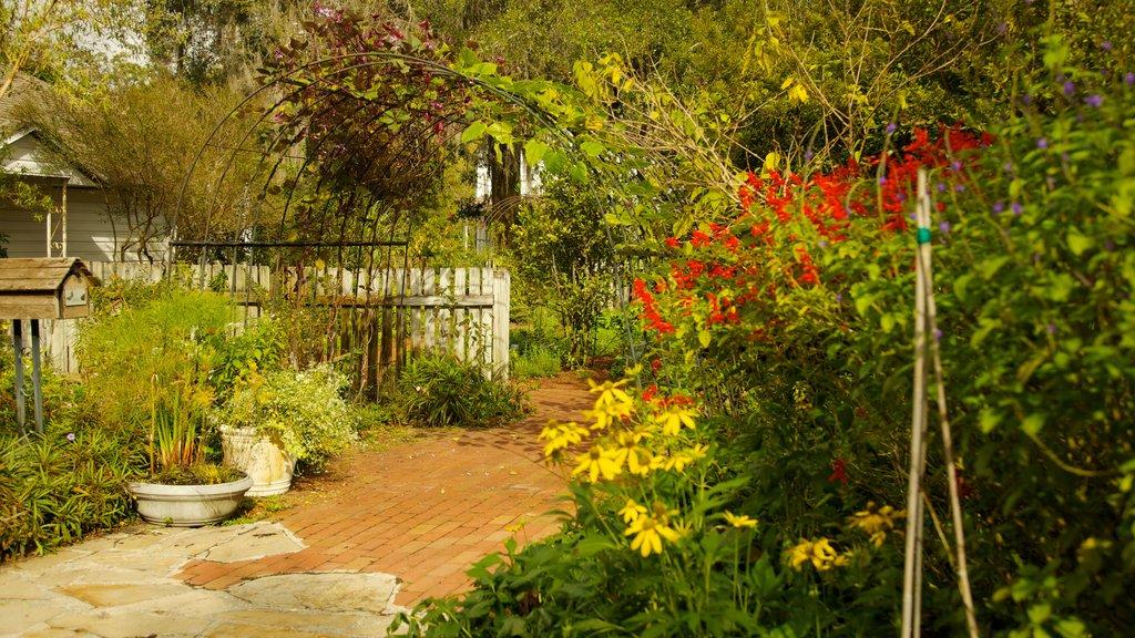Harry P. Leu Gardens showing flowers, a park and landscape views