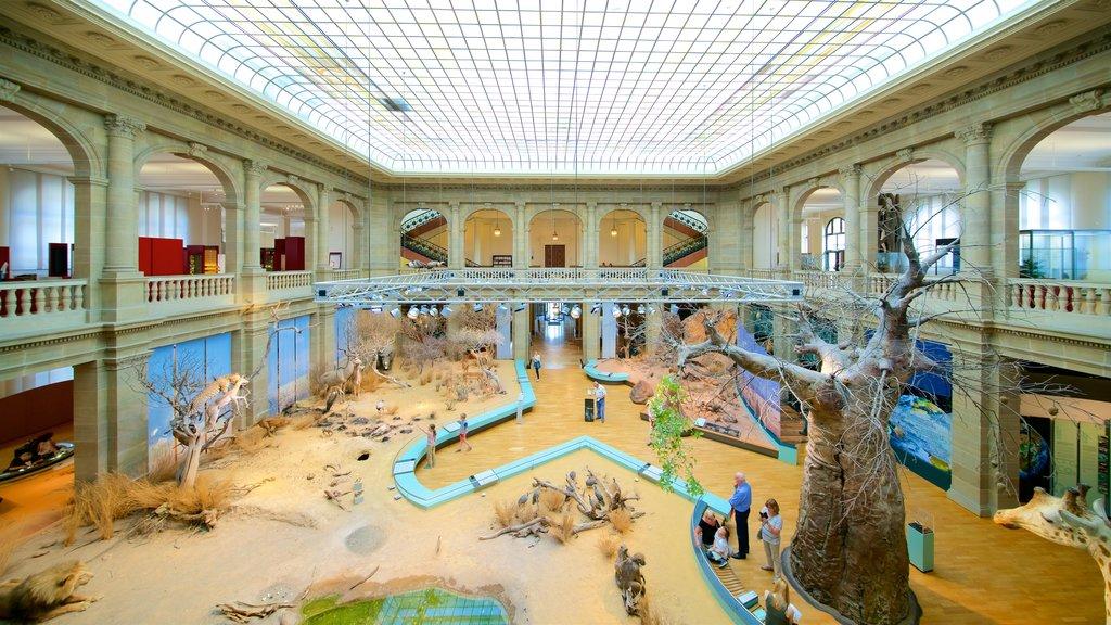 Alexander Koenig Research Museum