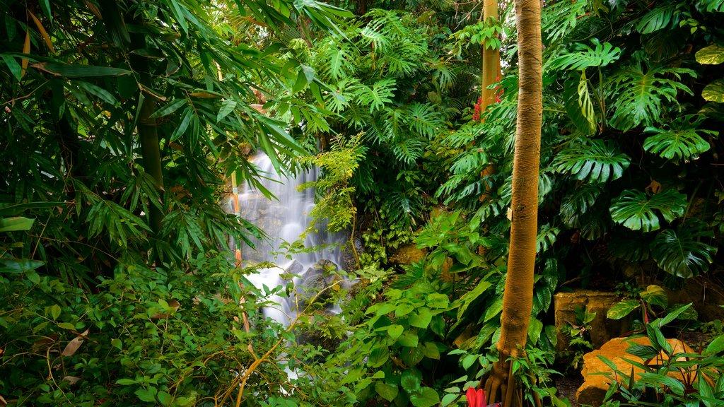 Grugapark Botanical Garden