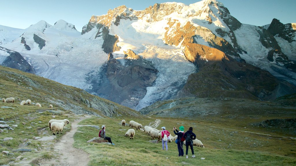 Gornergrat Station which includes mountains, a sunset and tranquil scenes