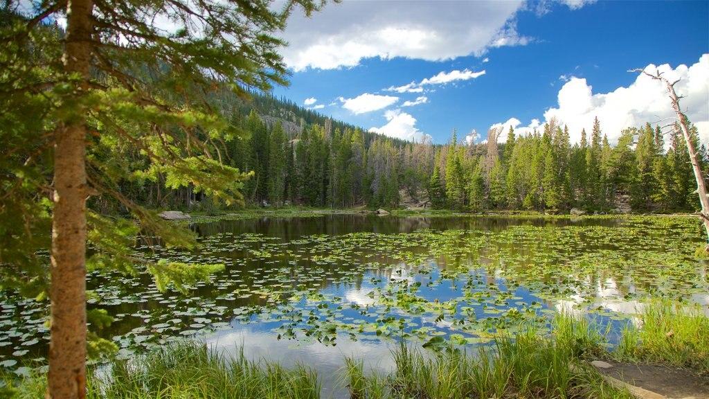 Colorado which includes a pond
