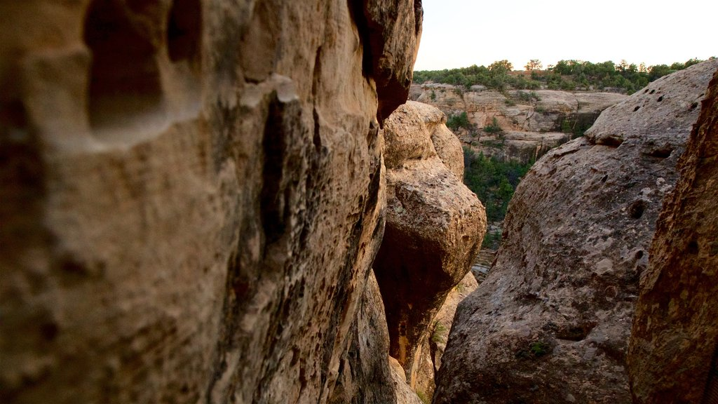 Mesa Verde National Park featuring tranquil scenes