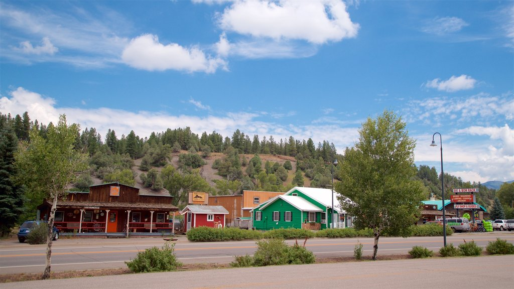 Pagosa Springs featuring a small town or village