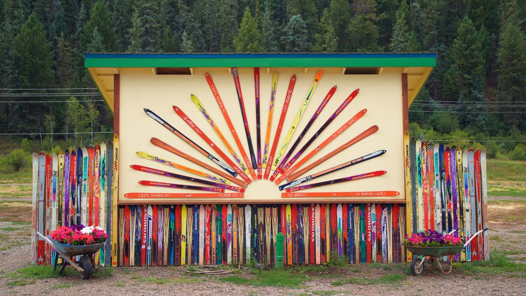 Pagosa Springs which includes flowers and outdoor art