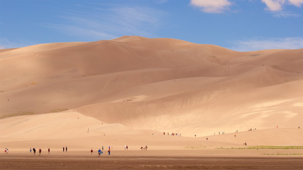 Great Sand Dunes National Park which includes landscape views and desert views as well as a small group of people