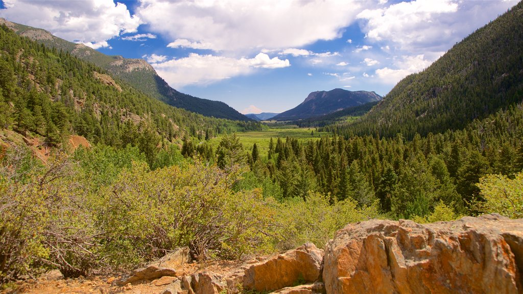 Estes Park featuring landscape views and tranquil scenes