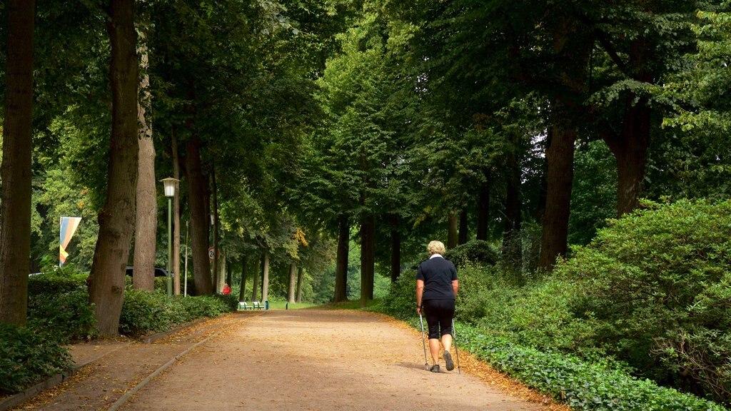 Bremen Buergerpark featuring a garden as well as an individual femail