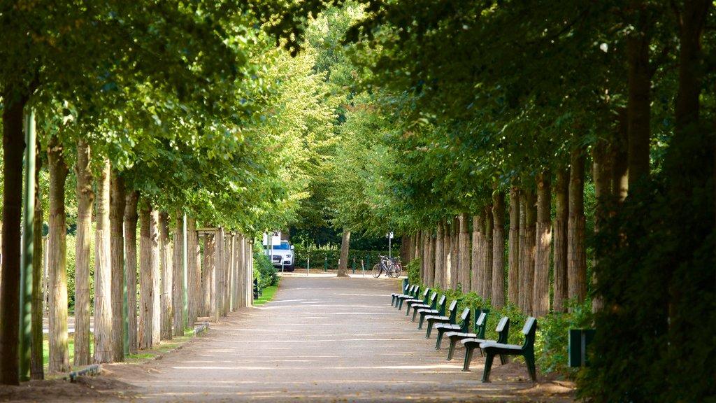 Bremen Buergerpark which includes a garden
