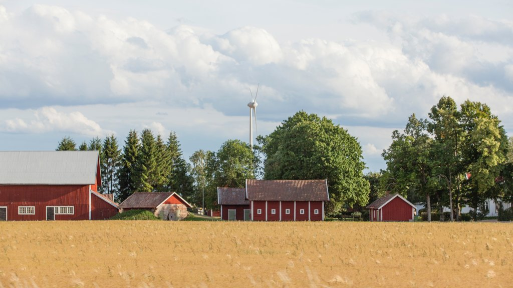 Linkoping which includes farmland and tranquil scenes