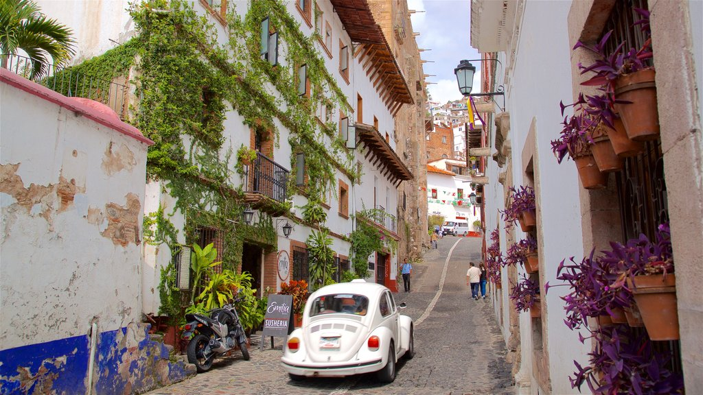 Taxco showing flowers