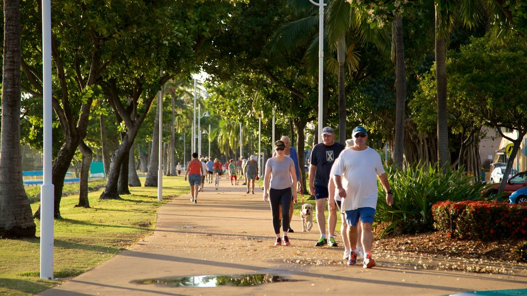 Townsville showing hiking or walking and a garden as well as a small group of people