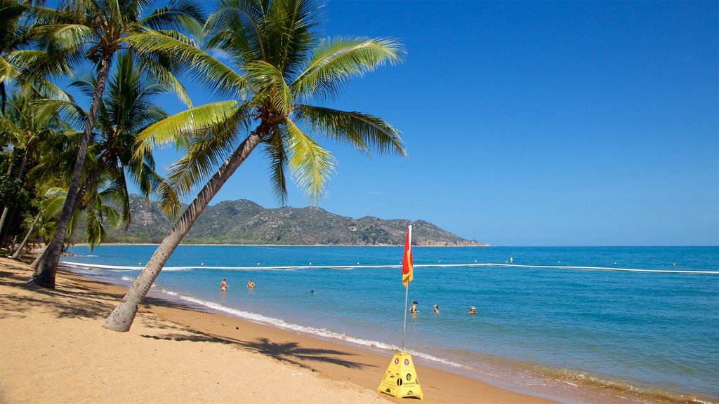 Townsville showing tropical scenes, a sandy beach and general coastal views