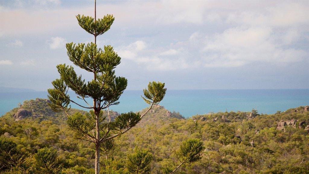 Parque Nacional Magnetic Island que incluye vistas generales de la costa y escenas tranquilas