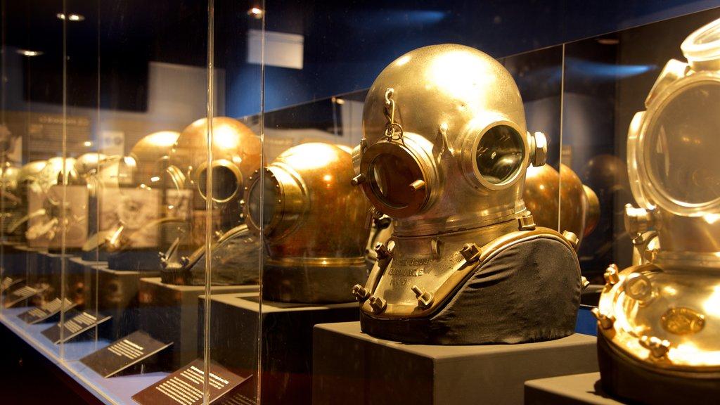 Museum of Tropical Queensland mostrando vistas interiores y elementos del patrimonio