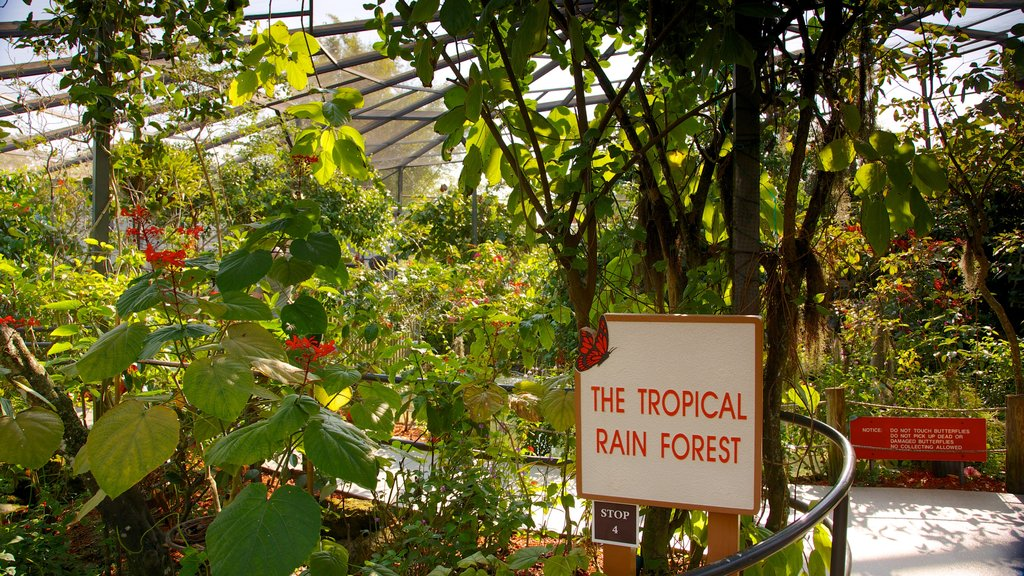 Butterfly World featuring tropical scenes, rainforest and signage