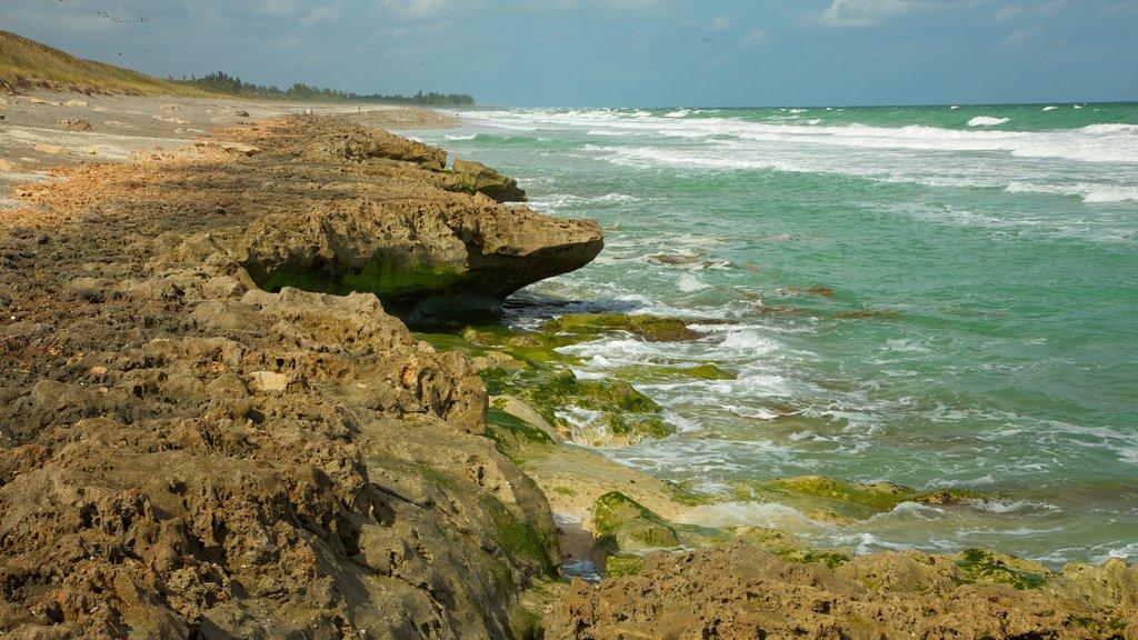 Jupiter Beach featuring landscape views, rocky coastline and general coastal views