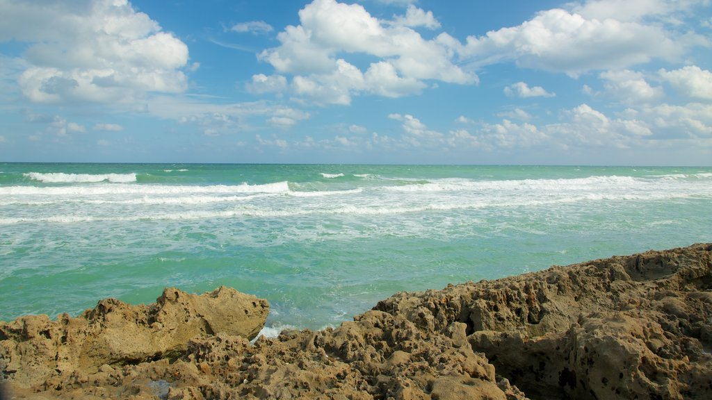 Jupiter Beach which includes a beach, a pebble beach and tropical scenes