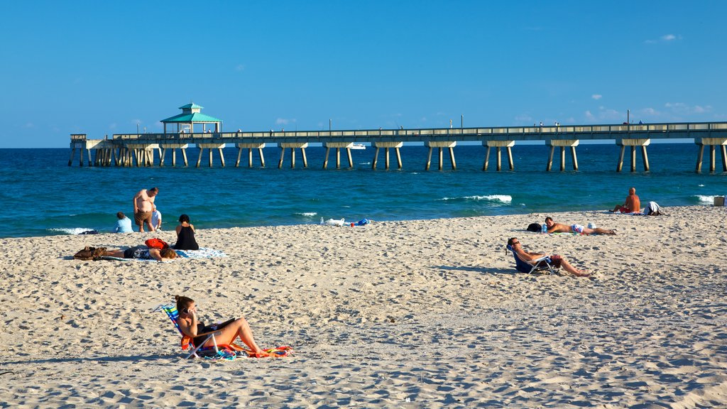 Deerfield Beach Pier which includes tropical scenes, a bridge and landscape views