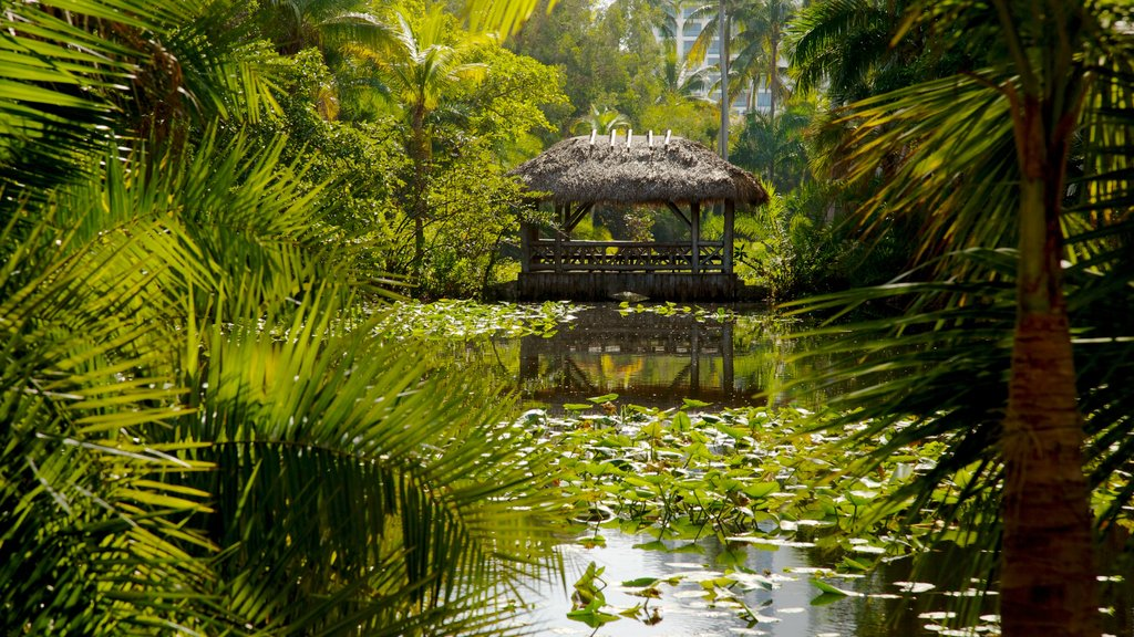 Bonnet House Museum and Gardens featuring a garden, landscape views and tropical scenes