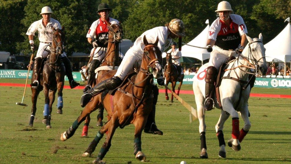 Parque Memorial que incluye equitación, un evento deportivo y un parque
