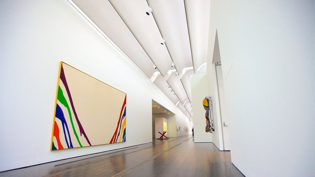 Menil Collection featuring interior views