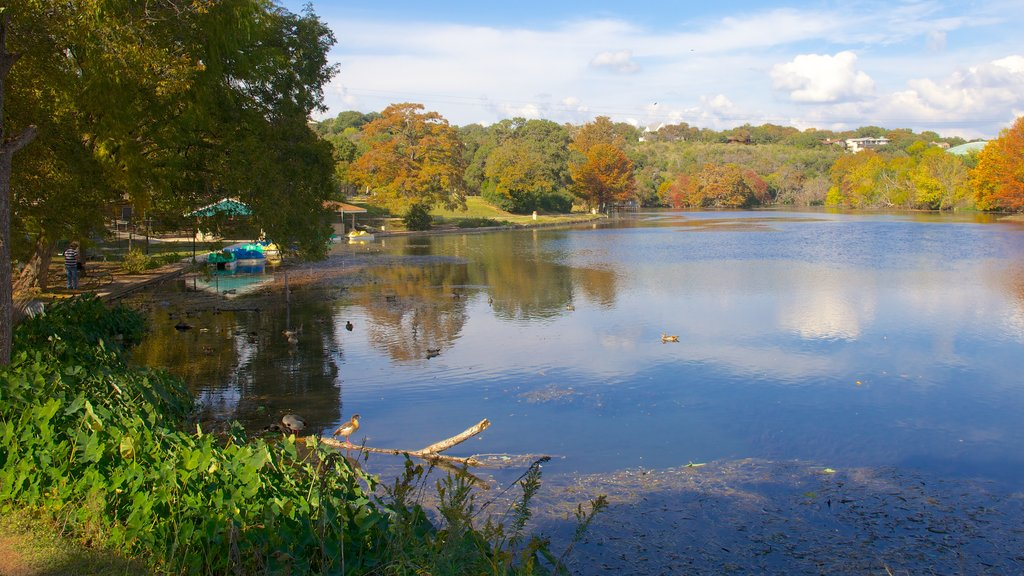 Landa Park which includes a garden, a lake or waterhole and landscape views