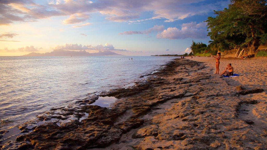 Islas de la Sociedad mostrando costa rocosa, vistas generales de la costa y una playa