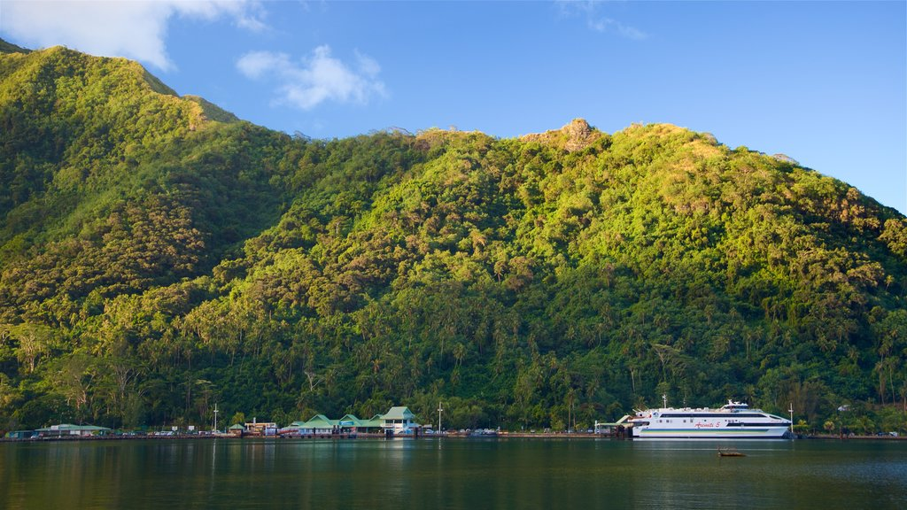 Moorea showing a bay or harbor and tranquil scenes