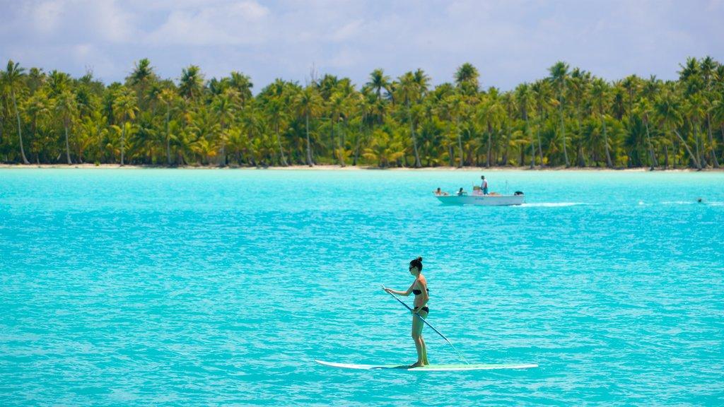 Bora Bora showing kayaking or canoeing, tropical scenes and general coastal views