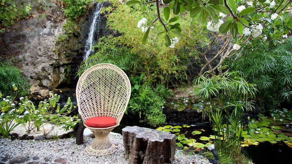 Sofitel Motu que incluye un estanque, flores silvestres y un parque