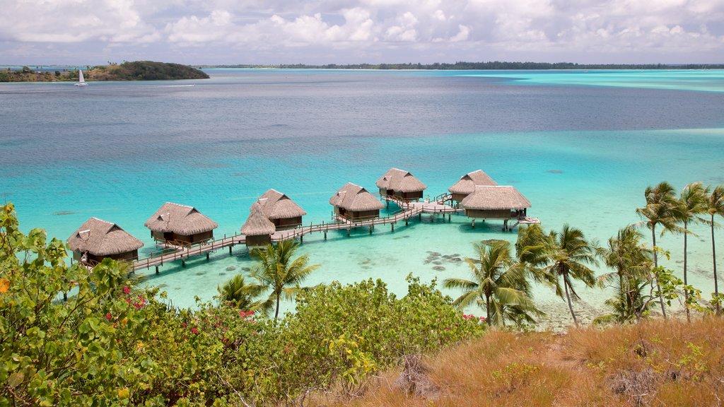 Islas de la Sociedad ofreciendo escenas tropicales, vistas de paisajes y vistas generales de la costa