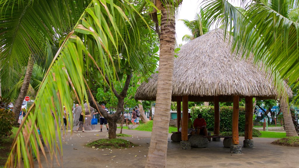 Papeete featuring tropical scenes and a garden