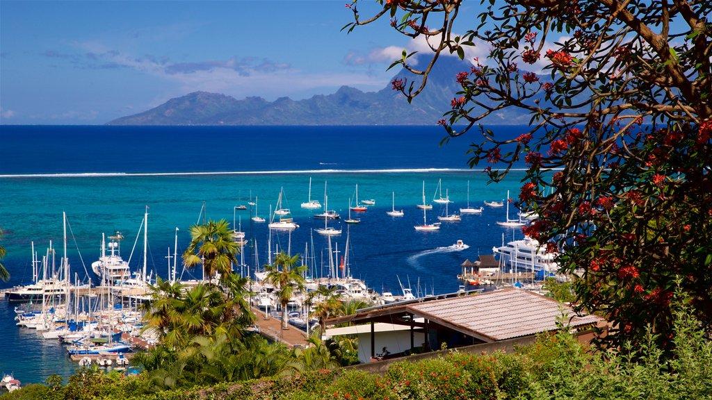 Tahití mostrando una bahía o puerto, vistas generales de la costa y flores silvestres