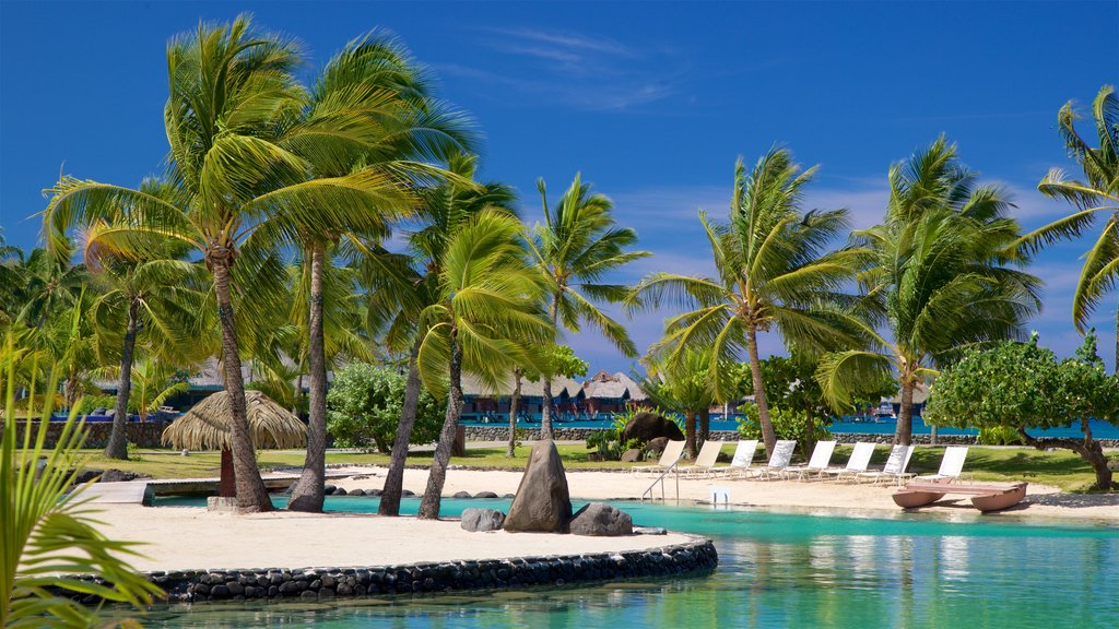 Tahiti which includes general coastal views, a sandy beach and tropical scenes